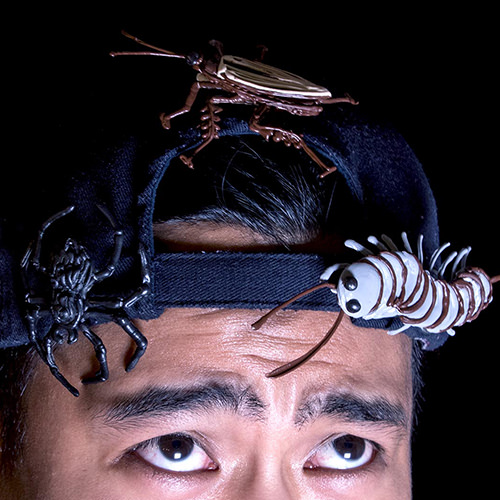 Creepy Crawly Pins