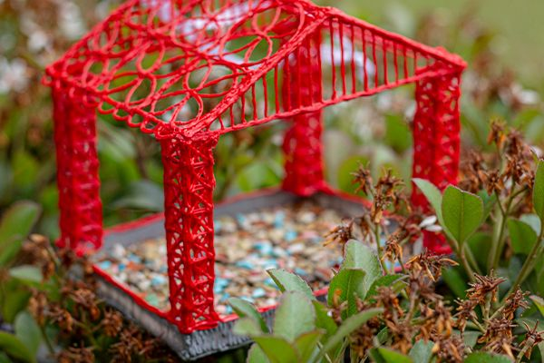 A DIY Feeder that Brings all the Birds to the Yard