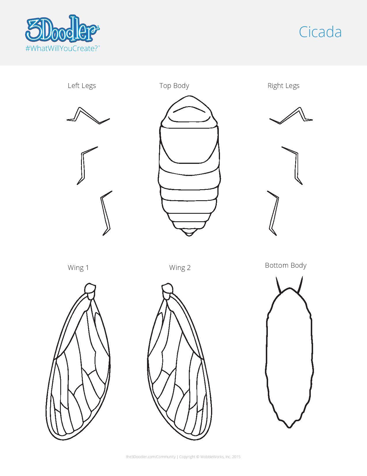 3D Pen Stencil Template Cicada Mania